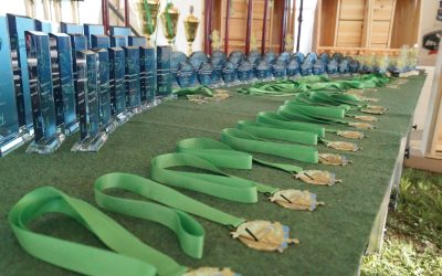 V. Nemzetközi Hethland Balatoni Feeder Kupa